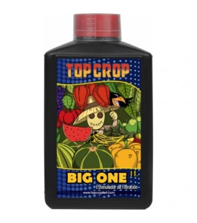 Top Crop Big One 1 lt