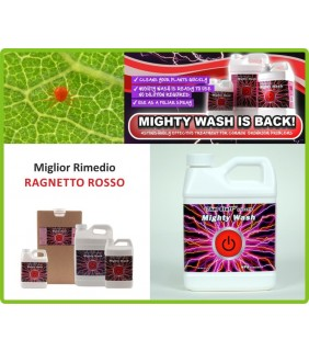 MIGHTY WASH - Antiparassitario contro Ragnetto Rosso Npk Industries