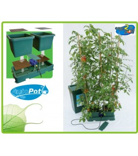 Easy2grow 2 Vasi Kit Autopot