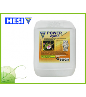 Hesi Power-Zyme 2.5 Lt