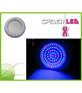 Ufo Led Grow Light 90watt Vegetativa Spider-Led